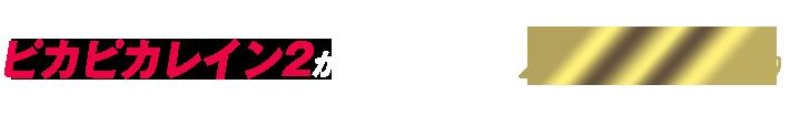 新型ポリマーワックス ピカピカレイン2が7,980円(税込)