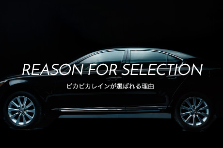 REASON FOR SELECTION ピカピカレインが選ばれる理由